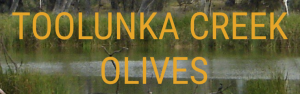 toolunka creek olives